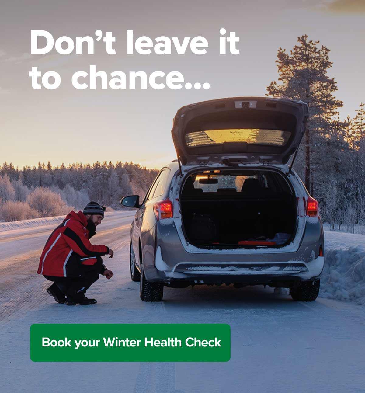 VM Winter Health Check